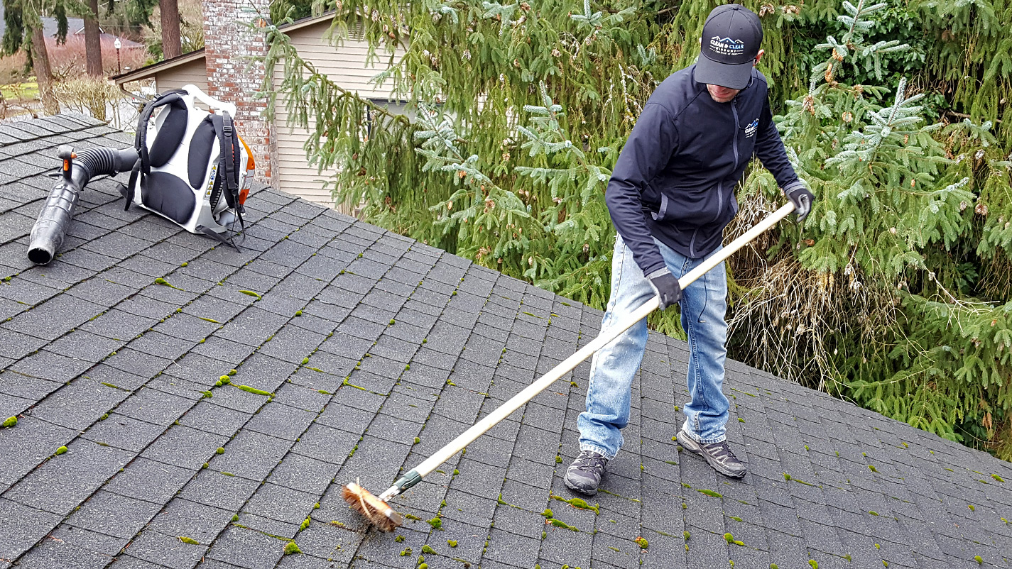 Moss Removal Gig Harbor Clean Amp Clear Windows
